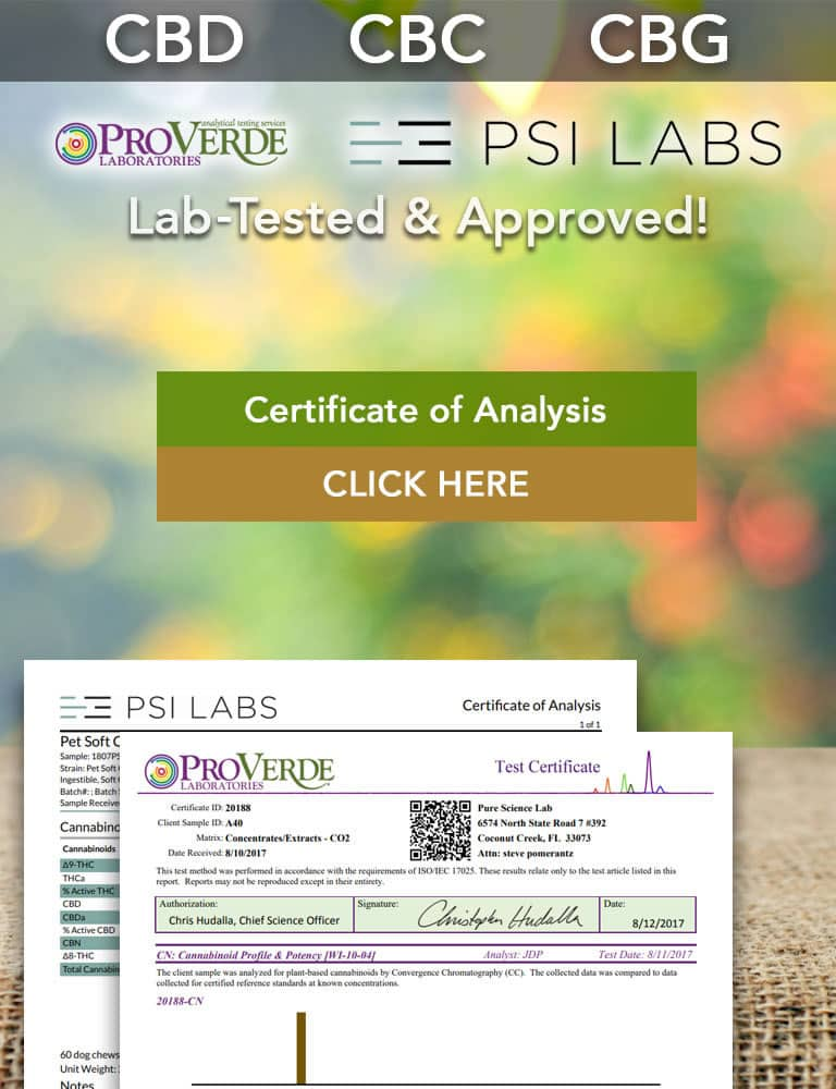 Certificate of Analysis - Banner